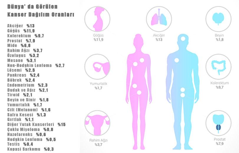 dunya-uzerinde-gorulen-kanser-dagilim-oranlari-2